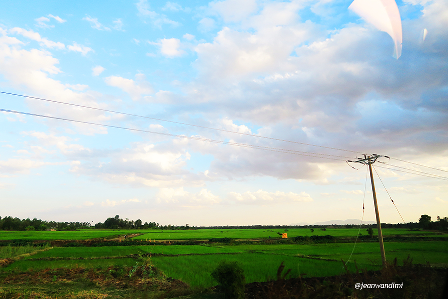 Taken at Mwea rice fields.
