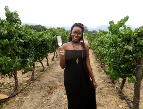 I WENT TO CAPETOWN FOR THE NEDERBURG WINE HARVEST